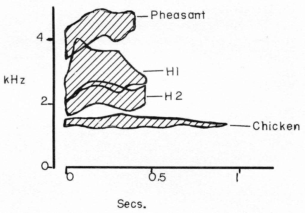 behaviorgenetics_pict222