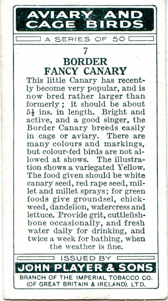 Border Fancy Canary — AVIARY AND CAGE BIRDS UK CARDS (1933)